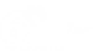 6iT digital marketing white logo